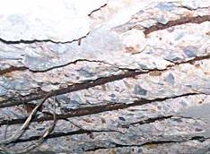 concrete-cover