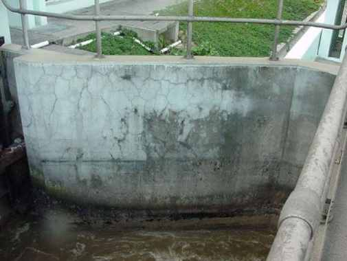 Treatment Plant Concrete Deteriorated Due to Alkali Aggregate Reaction