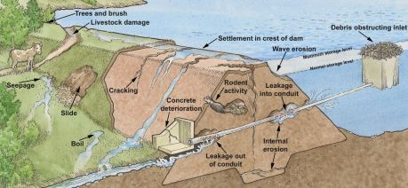 Causes of Failures of Earth dams
