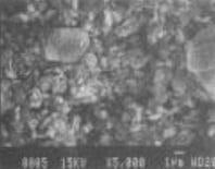 Micro Texture of Metakaolin