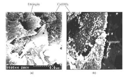 SEM micrograph of PCC