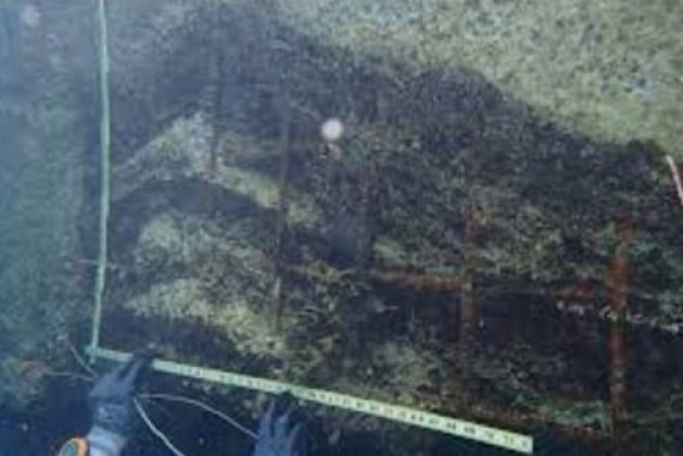 Inspection of Underwater Concrete Structures -Methods, Types and Purpose