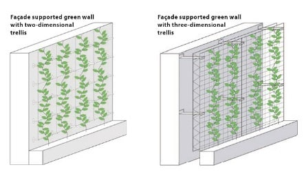 Green wall system in the facade supported green walls