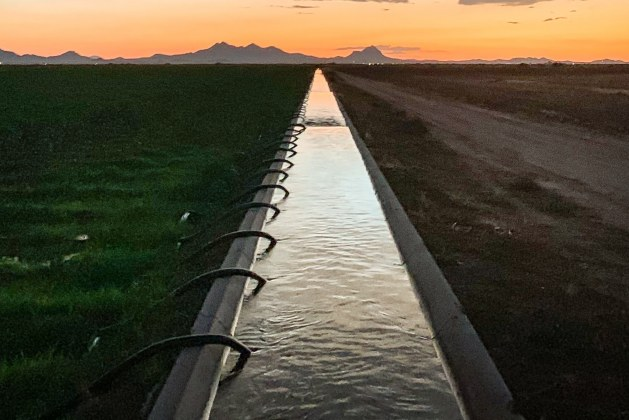 What is Irrigation? What are the Types of Irrigation?