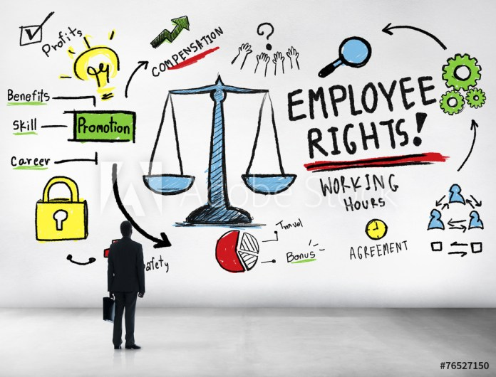 Survey shows people are uncertain about their employment rights