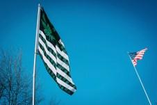marijuana michigan flag