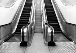 The escalator to success is broken