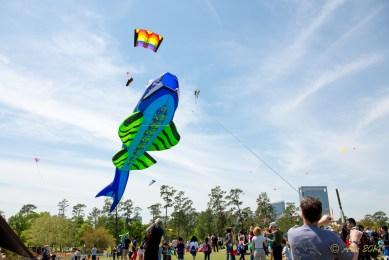 Hermann Park Kite Festival