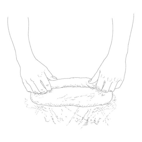 2. Working from one long end, roll up the dough evenly to form a tight, uniform cylinder.