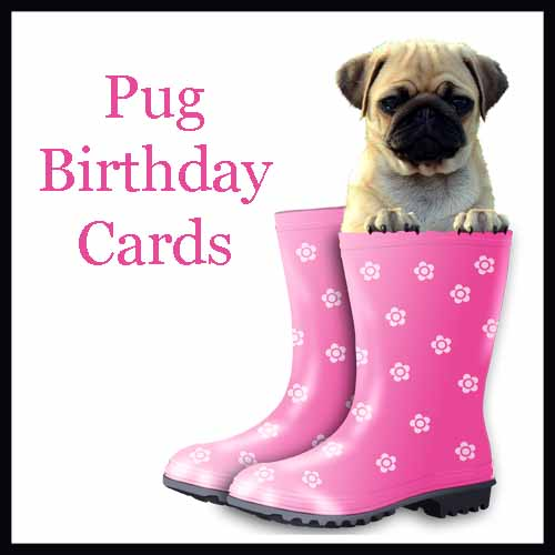 Pug Birthday Cards Copy