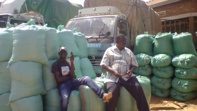 Maize scarcity leaves traders in Busia unemployed