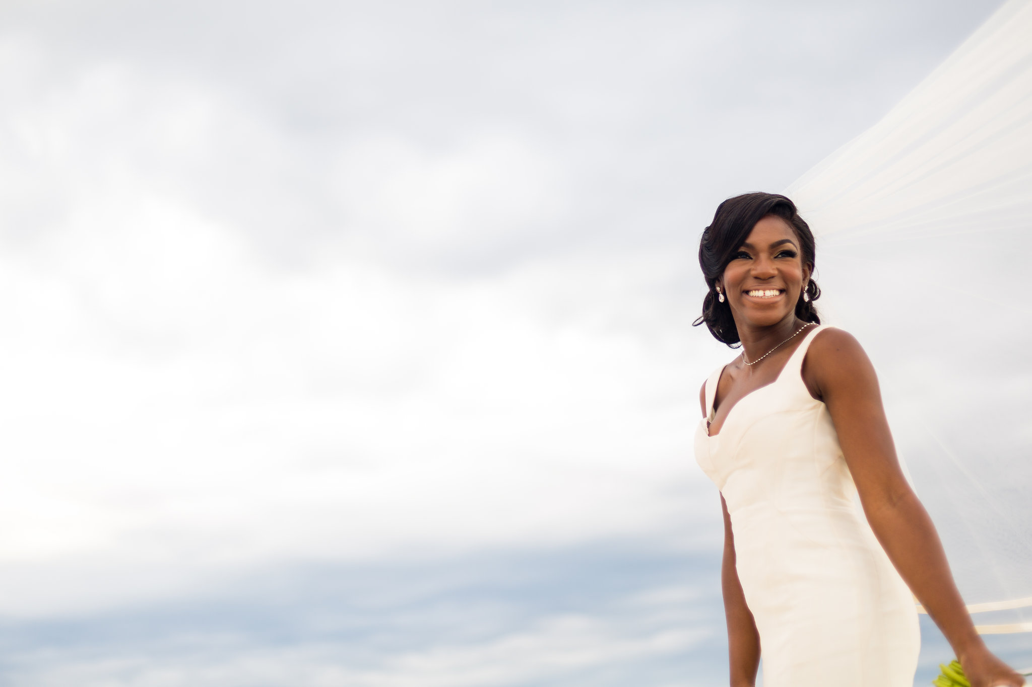A Nigerian Multicultural Luxury Wedding In Virginia Sade
