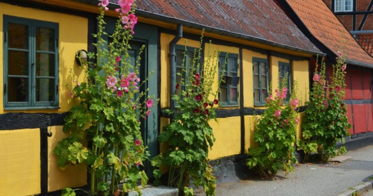 Danish julefrokost at Restaurant Kronborg