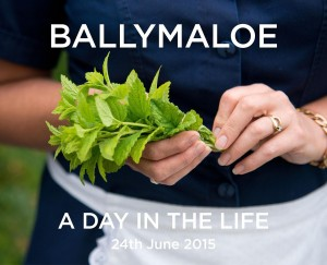 Front cover of Ballymaloe a day in the life(1)