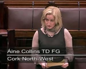 2011-11-16-Áine-Collins-TF-FG-speaking-in-the-Dáil-300x242-300x2421