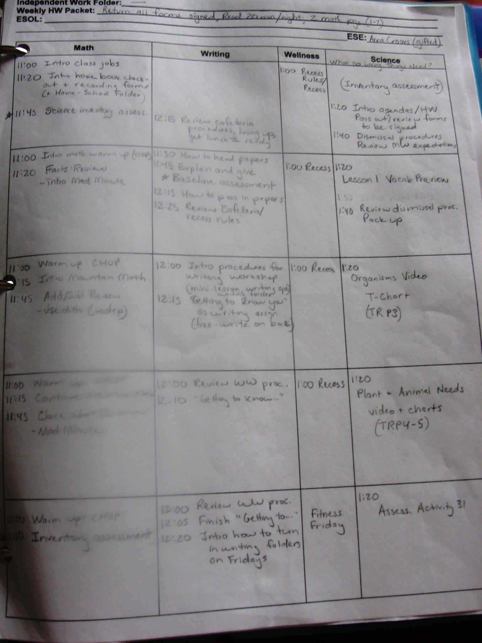 Curriculum Planning Worksheet