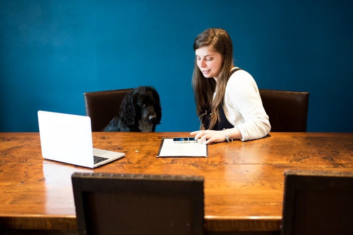Lily's of Truro | The Cornish Dog