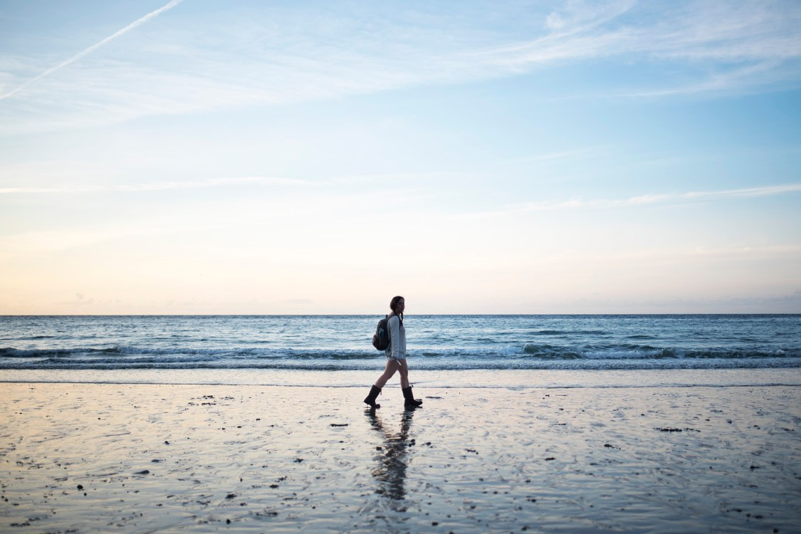 Dog Friendly Beaches in Cornwall | The Cornish Dog