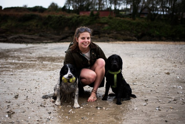 Hattie Woody and Millie Spaniels | The Cornish Dog