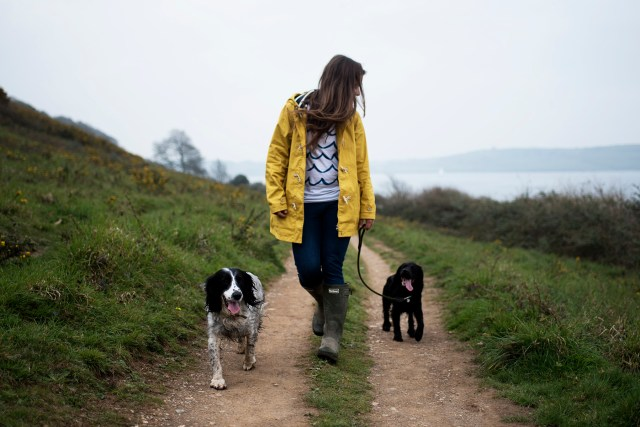 Low Waste Swaps for You and Your Dog | The Cornish Dog
