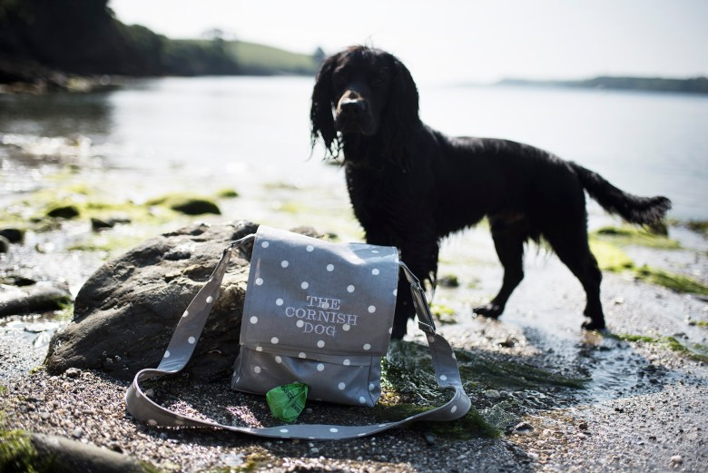 Low Waste Swaps for You and Your Dog   The Cornish Dog