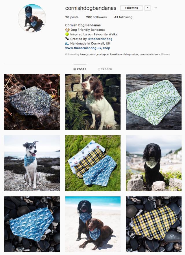 Cornish Dog Bandanas | The Cornish Dog