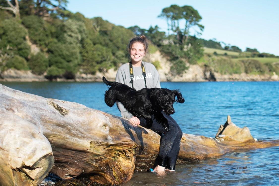 The Paw Post   The Cornish Dog