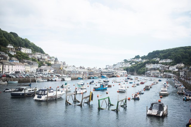 Dog Friendly Looe | The Cornish Dog