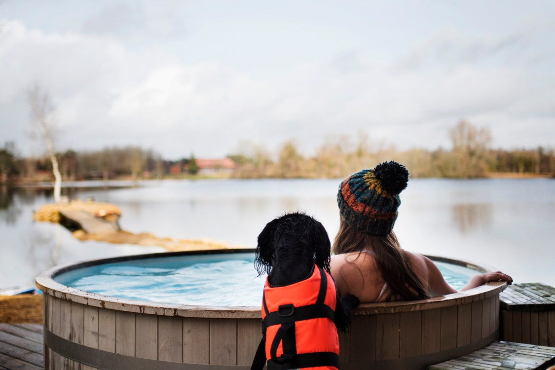 Visit Wiltshire | The Cornish Dog