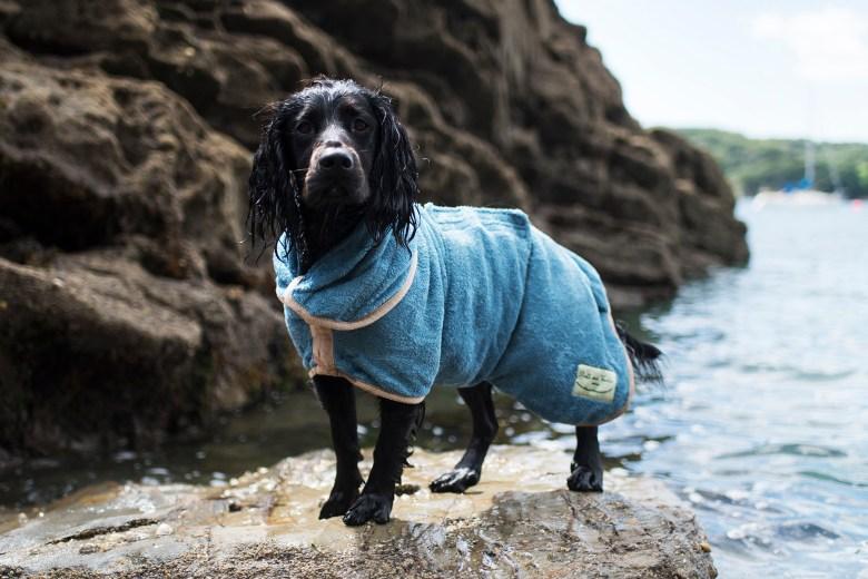 Ruff and Tumble Dog Coats | The Cornish Dog