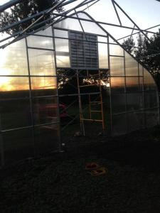 New hoop house going up