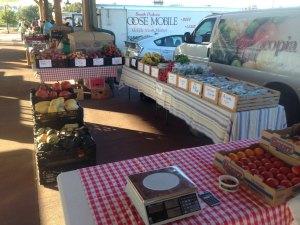 At the Falls Park Farmers Market