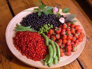 A June Harvest