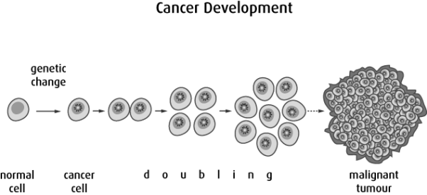 Cancer is cell division out of control