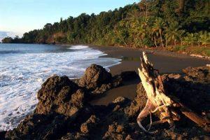 Explore Costa Rica's Best Beaches: Corcovado | TCRN