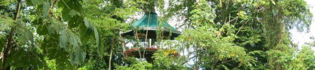 tree house costa rica