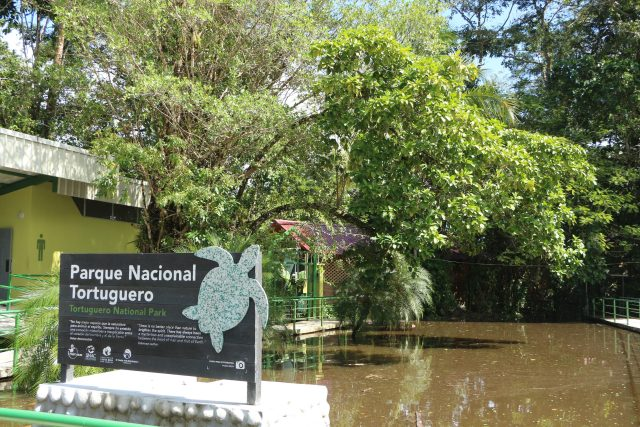 Tours Tortuguero National Park