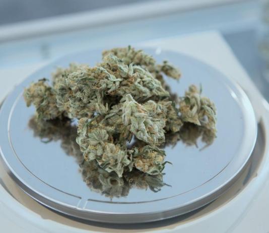 medical marijuana costa rica
