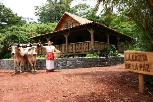 Casita de la Paz Country House Oven Oxen Costa Rica Lovely