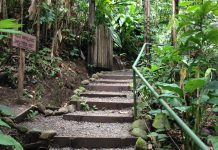 Differences between Ecotourism and Sustainable Tourism in Costa Rica