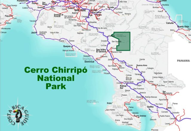Chirripó National Park covers an extense area of forests, mountains, and wildlife.