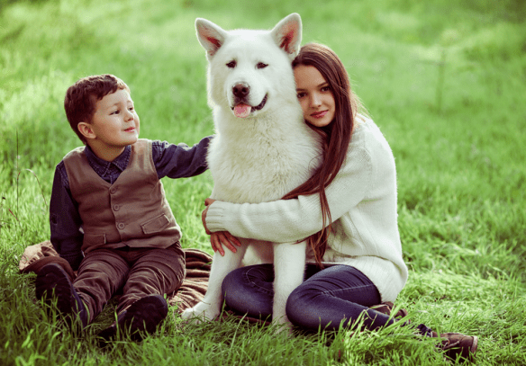 Many people just love dogs,