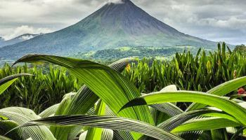 Natural beauty with a distant volcano