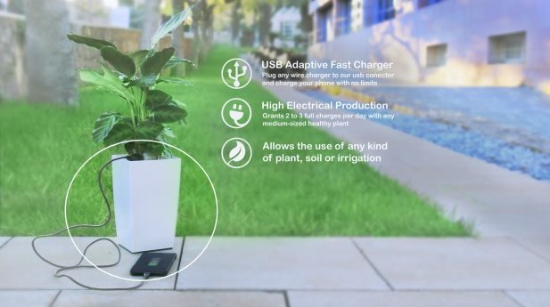 Charging system using electric energy obtained from plants