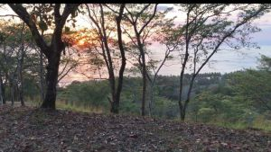 Lot of land with spectacular view