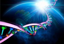 DNA double helix in space