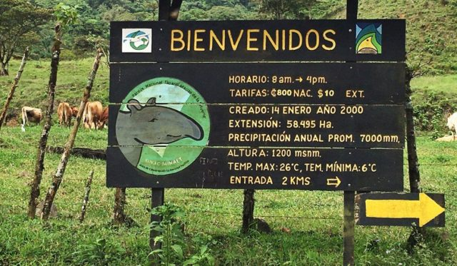 Welcome to Tapantí National Park!