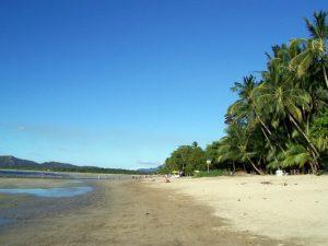 Tamarindo landscape