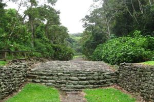 Guayabo Landscape