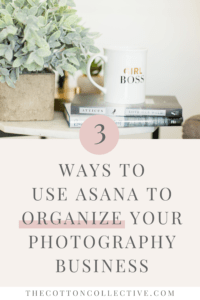 how-to-organize-photography-business-with-asana